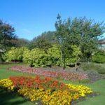 wellfare park scenery